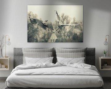 Limitless 4 von Forestia Arts