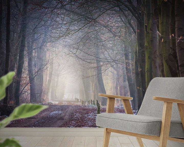 Impression: Bospad op Dwingelderveld in het vroege zonlicht. sur Anneke Hooijer