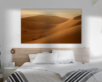 Zonsondergang zandduinen Erg Chebbi