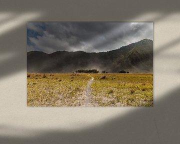De zandvlakten van Mount Bromo van Thijs van den Broek