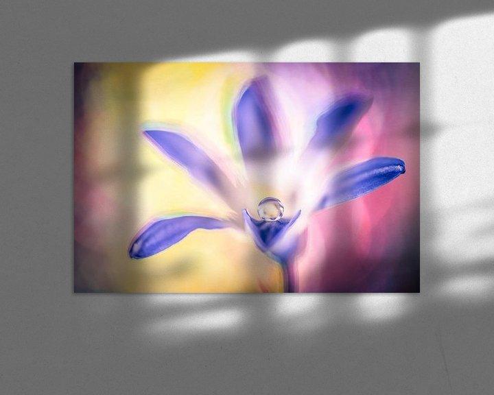 Sfeerimpressie: Druppel op een bloem van Bert Nijholt