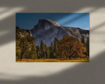 Yosemite park van Rien van Bodegom