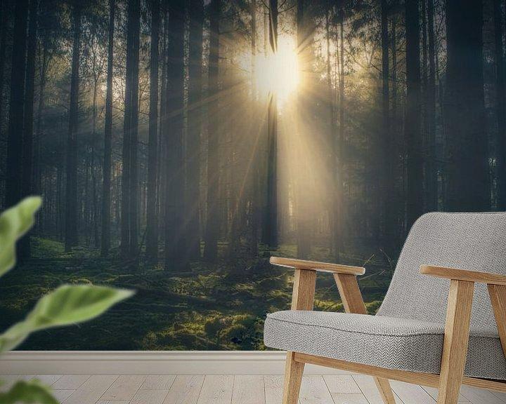 Sfeerimpressie behang: Zonneschijn door de bomen van Joost Lagerweij