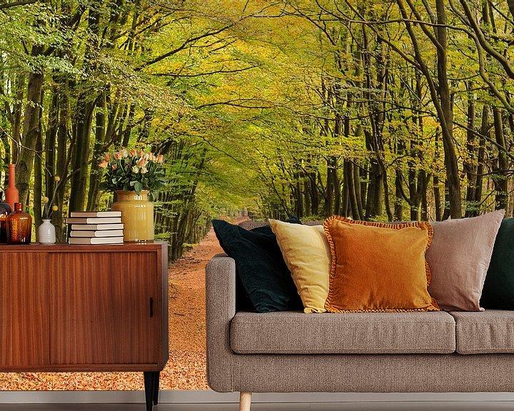 Impression: Forêt d'automne à Hoog Buurlo sur Joop Gerretse
