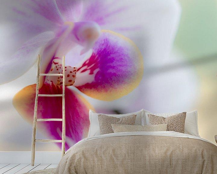 Sfeerimpressie behang: orchidee van Maja Ooms