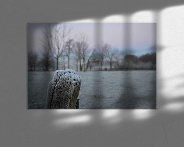 frost in the Netherlands von Fraukje Vonk