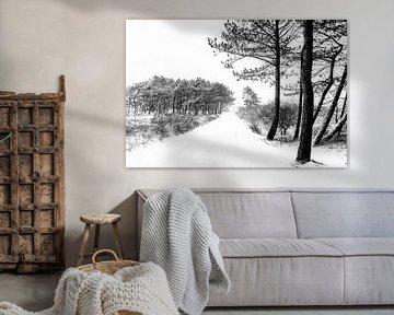 Winter op Terschelling (Klein Eldorado) von Albert Wester Terschelling Photography
