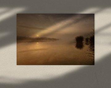 Goudkleurige zonsopkomst Dwingelderveld