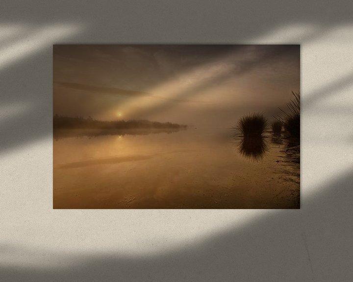 Impression: Goudkleurige zonsopkomst Dwingelderveld sur Anneke Hooijer