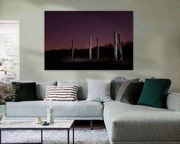 Spotlight #1 van Jeroen Berkenbosch