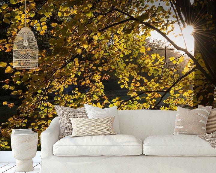 Beispiel fototapete: Zon en herfst von Rob IJsselstein