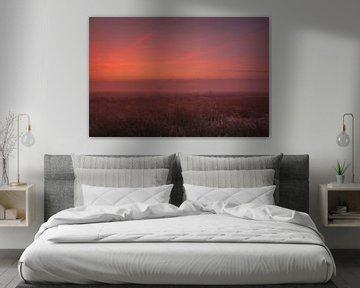 Dynamische lucht voor zonsopkomst Dwingelderveld