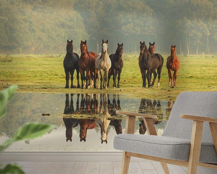 Impression: Nieuwsgierige paarden sur Anneke Hooijer