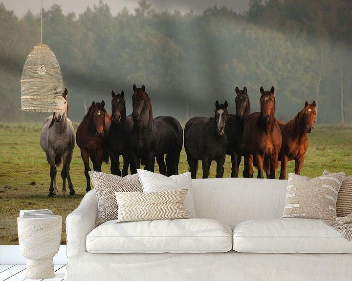 Beispiel fototapete: Nieuwsgierige paarden (III) von Anneke Hooijer