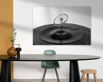 Die Form des Wassers | Tröpfchen Fotografie von Marc Piersma