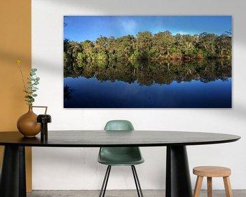 Reflectie van bomen in rivier van Ingrid Meuleman