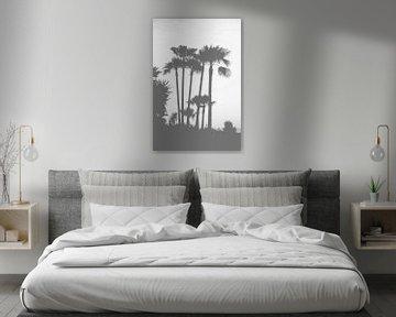 black and white palm trees von Nienke Stegeman