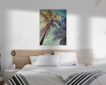 palmboom van Ivana Luijten