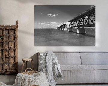 Florida Keys Bahia Honda Bridge Amerika USA van Sita Koning
