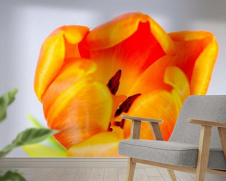 Impression: Oranje tulp sur Maerten Prins
