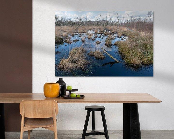 Sfeerimpressie: Natuurreservaat het Wooldse veen in Winterswijk van Tonko Oosterink
