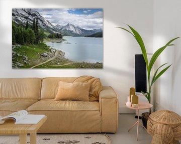 Medicine Lake in de Rocky Mountains van Canada van Hilda Weges