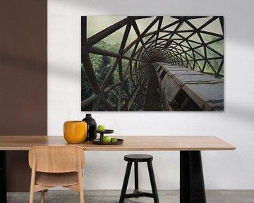 Bridge beyond von Michelle Casteren