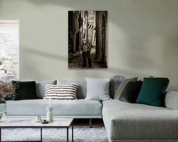 Oude fransman van Halma Fotografie