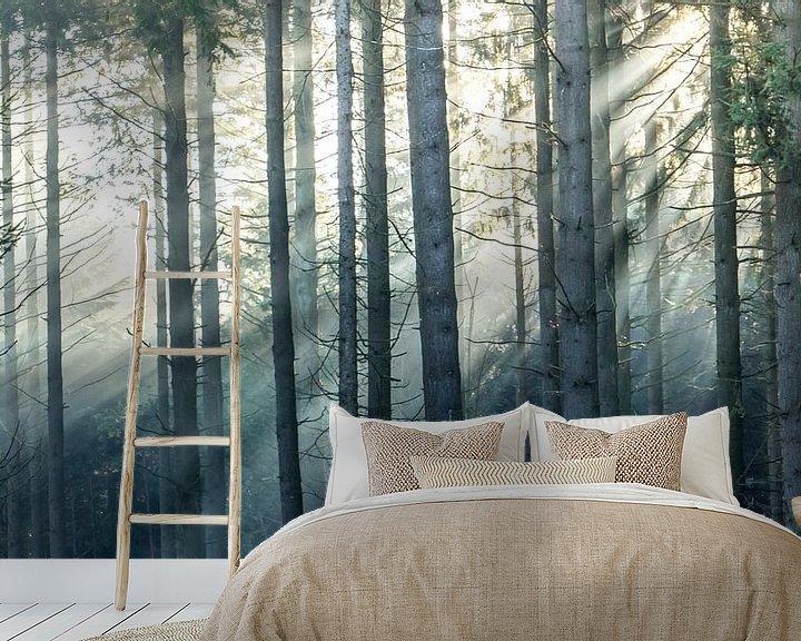 Sfeerimpressie behang: Zonnestralen in een boslandschap van Martzen Fotografie