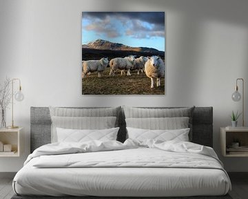 Isle of Skye von Aaron de Haas