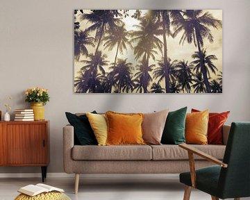 Palmbomen tegen een ondergaande zon van Susanne Pieren-Canisius