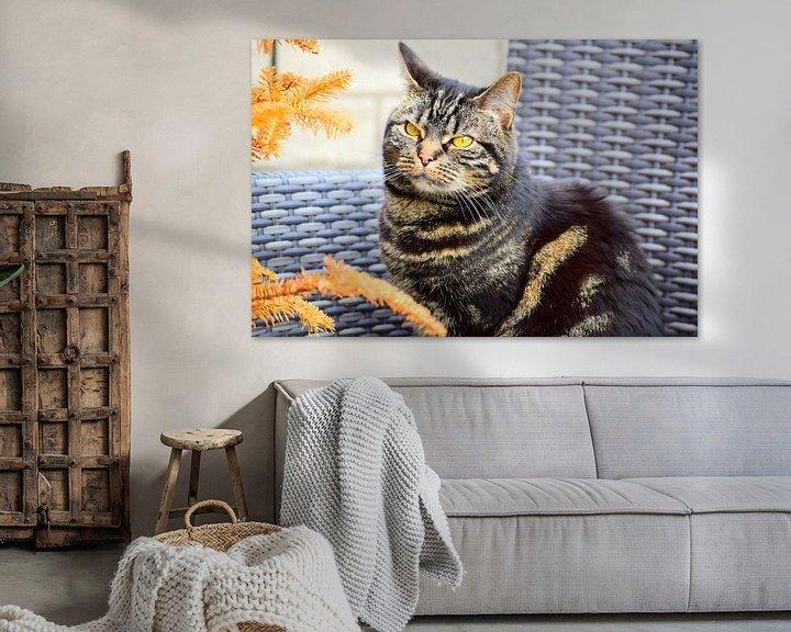 Beispiel: Katzenflaum Bernstein von Chimzoe !