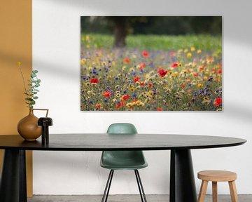 Veldbloemen in de berm von Anneke Hooijer