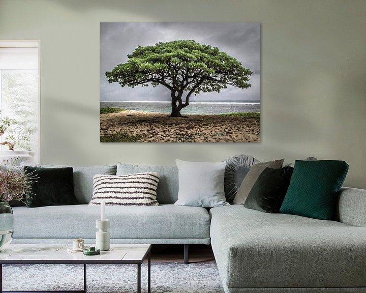 Sfeerimpressie: Lonely tree van Corali Evegroen