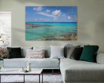 De ontelbare blauwtinten van de kust van Bonaire van Myrthe Visser-Wind