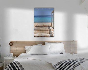 Steiger op Bonaire van Myrthe Visser-Wind