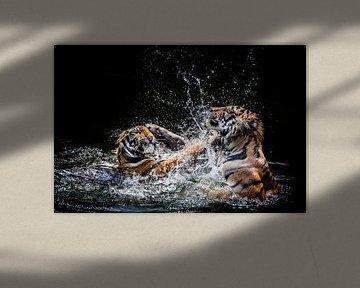 Two Tigers van Günter Albers