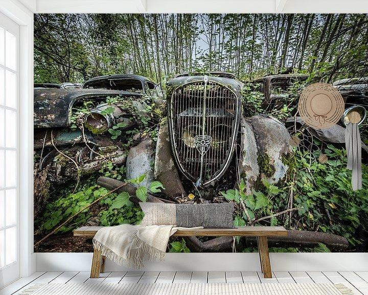 Sfeerimpressie behang: Oude auto tussen de bomen van Inge van den Brande