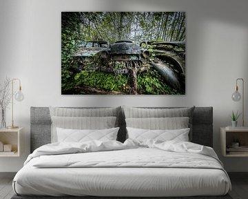Wald mit alten Autos von Inge van den Brande