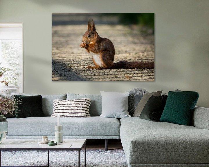 Beispiel: Eichhörnchen im Park von Tobias Luxberg