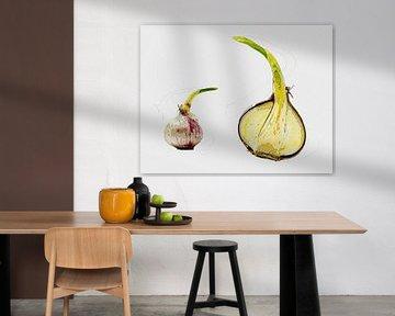 Garlic van Leopold Brix