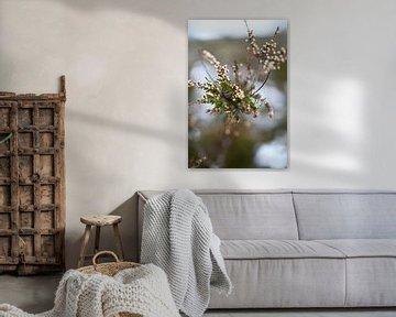 Winter floral von Femke Sijtsma