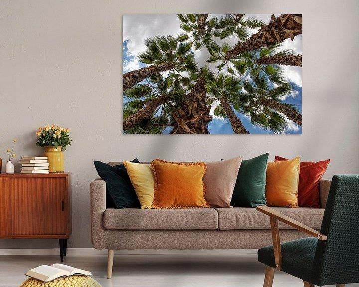 Beispiel: palmboom von Jan Pel