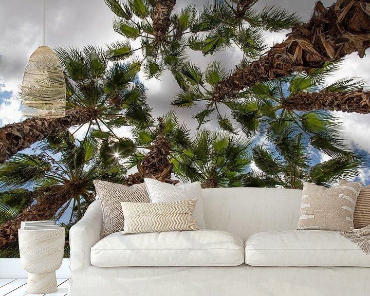 Beispiel fototapete: palmboom von Jan Pel