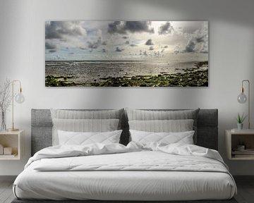 Wattenmeer von seiner besten Seite von Marcel Pietersen
