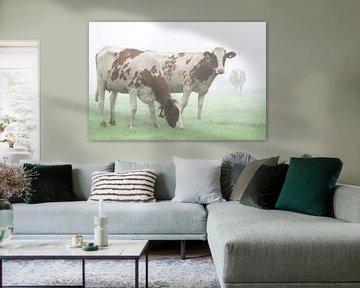 Koeien in de mist van Karin in't Hout