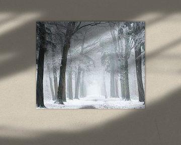 Wind und Schneesturm von Fabrizio Micciche