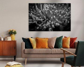 Eine grüne Blume in Schwarz und Weiß von Jefra Creations
