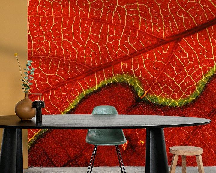 Sfeerimpressie behang: Detail opname van een herfstkleurig blad. van AGAMI Photo Agency