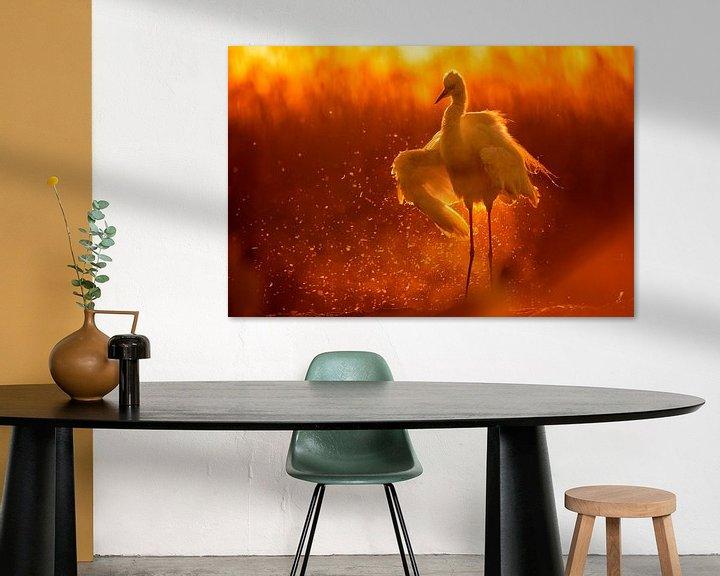 Sfeerimpressie: Grote Zilverreiger ( Egretta alba) zonnebadend. van AGAMI Photo Agency